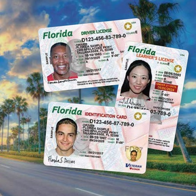 Driver licenses